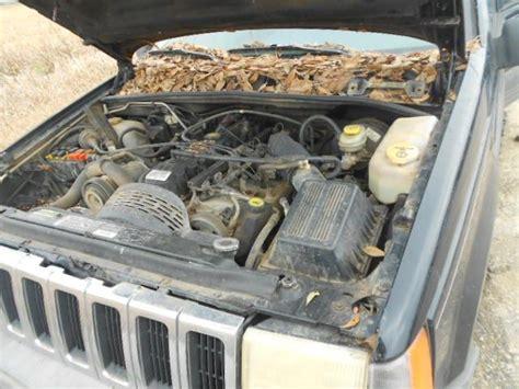 96 jeep grand front bumper front bumper assembly 96 97 98 jeep grand laredo