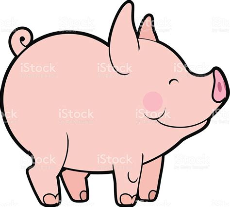 pig clipart 1 royalty free stock illustrations vector 귀여운 벡터 어린 돼지 일러스트 519173921 istock