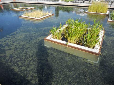giardini acquatici giardini d acqua e laghetti giardino acquatico linee co