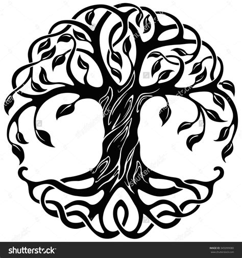 trees symbolism celtic tree of life stock photos images pictures