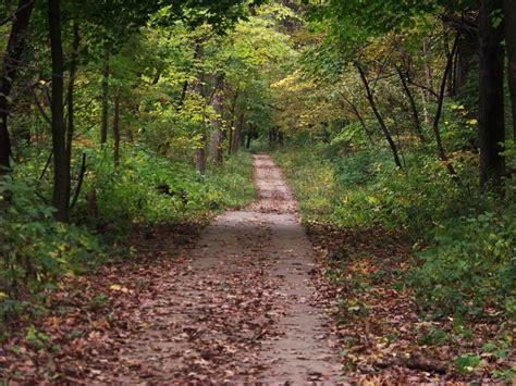 A Worn Path Essay by A Worn Path Essay Exles Technicalcollege Web Fc2
