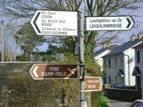 County Carlow Ireland Birth Records 17 Best Images About Farrell Genealogy On