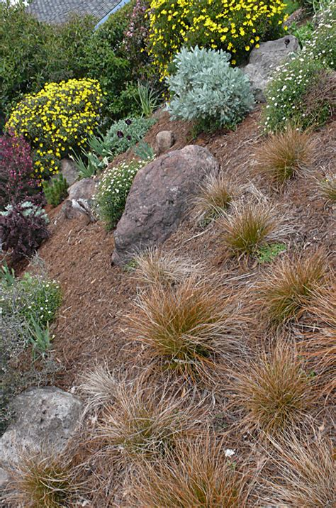 xeriscape design definition 301 moved permanently