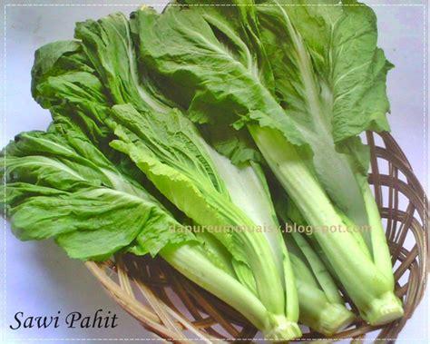 la cuisine de lia sawi pahit