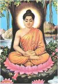 Buddha And Lotus Junletow Buddha Lotus Flower
