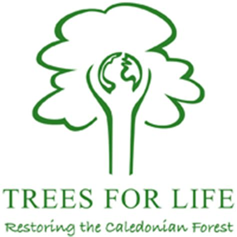 Trees For The Charity Thats Restoring The Caledonian Forest by Scottish Books For In The Name Of Trees And Bears