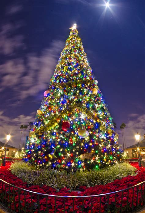 epcot s christmas tree walt disney world resort epcot