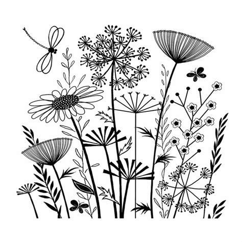 flower pattern line art summer meadow tangled landscaping and floral