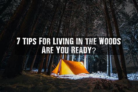 7 Tips On Being The by 7 Tips For Living In The Woods Are You Ready