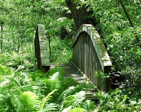 botanical gardens michigan fernwood botanical gardens niles michigan photo by david