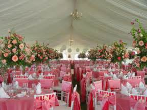 Wedding Canopy Decoration Ideas by Tent Wedding Decorations Wedding Ideas