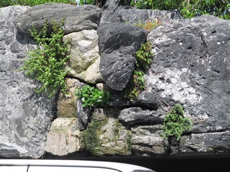 garden lava rock 24 rock wall garden designs decorating ideas design