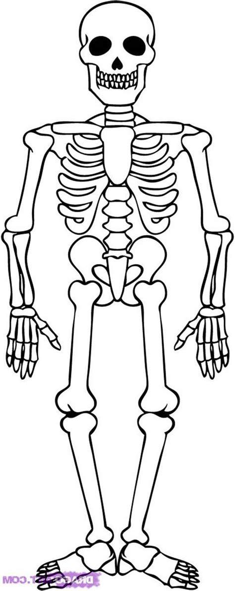 printable toddler size skeleton skeleton coloring page jacb me