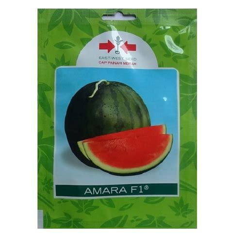Benih Buah Semangka Manis Tanpa Biji Eceran Mudah Tumbuh Dan Cocok Di benih semangka amara f1 20 gram panah merah bibitbunga