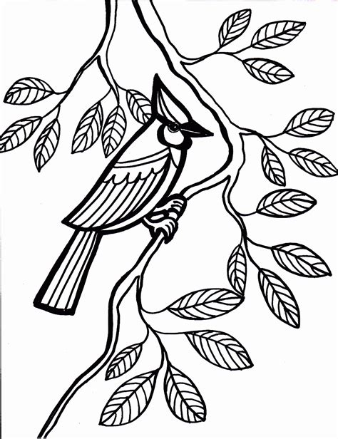 coloring pages of birds bird coloring pages coloring pages to print