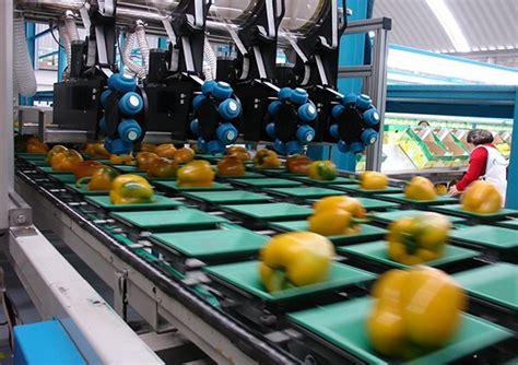 cadena de suministro digital cadena de suministro en la era digital transporte mx