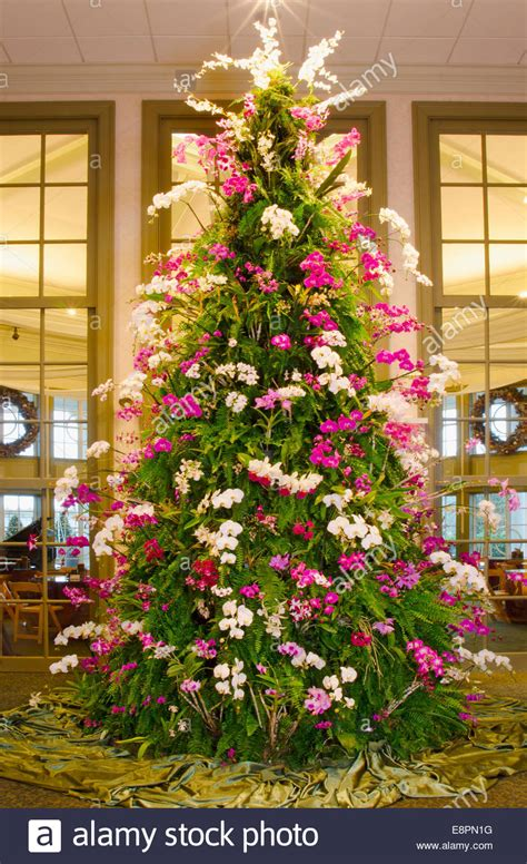 this spectacular christmas tree is made of tropical plants