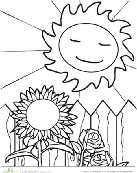The Weather Painter Sun Spwa En032 Secret 1st Edition sun and sunflower worksheet education