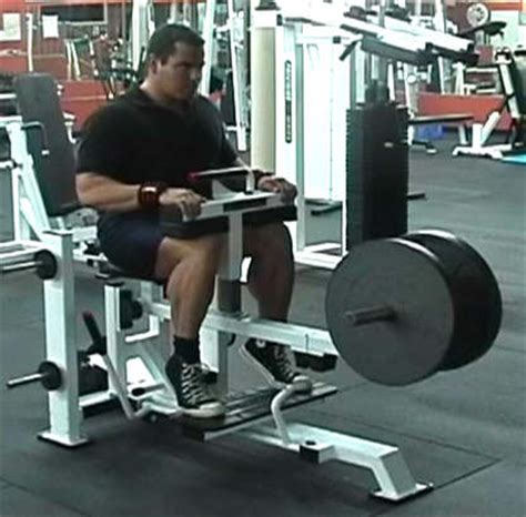 seated calf raise machine work outs calf