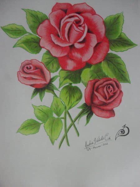imagenes de flores a color bocetos a lapiz blogartistico