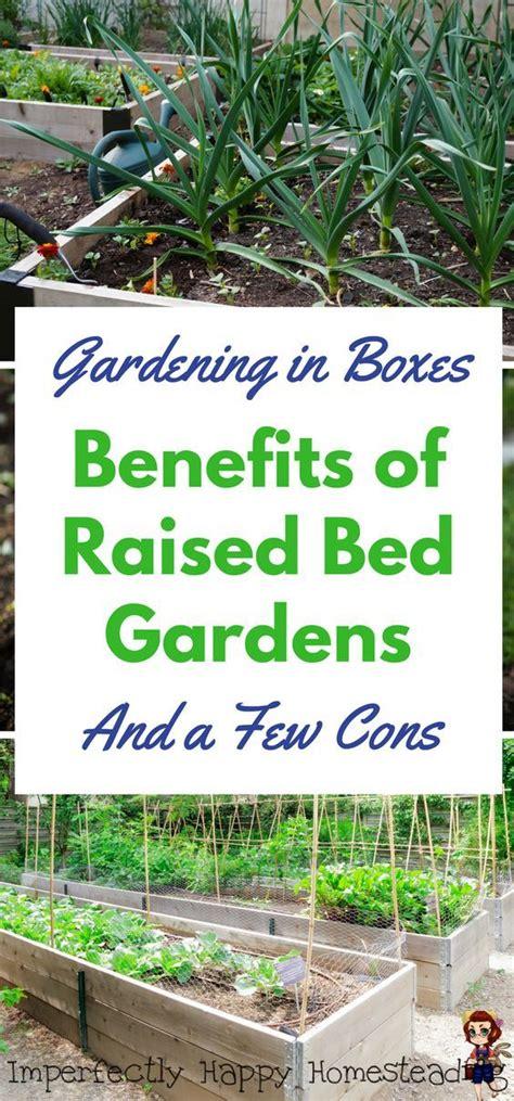 benefits of raised bed gardening 25 best ideas about raised herb garden on