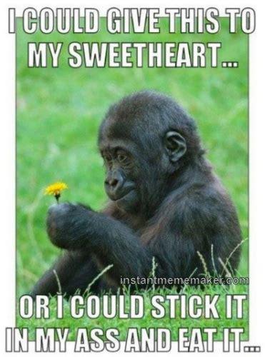 Meme Monkey - instantmememaker com monkey love 171 instant meme maker