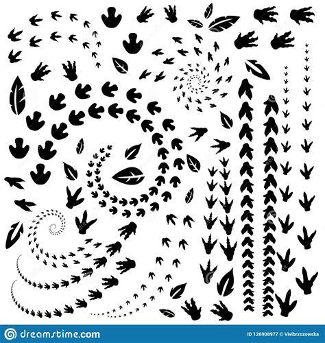 animal  reptile footprints vector cartoondealercom