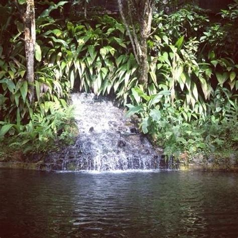 imagenes fuentes naturales de agua fuentes naturales de agua picture of reserva natural