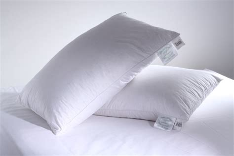 Are Feather Pillows by Greens Of Bournemouth Goose Feather Pillow Hayley