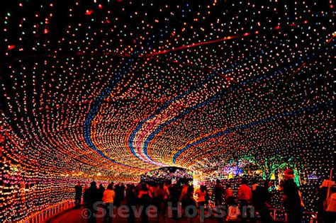 Trail Of Lights by Trail Of Lights S Annual Trail Of Lights In Flickr