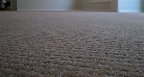 upholstery cleaning charlotte nc upholstery cleaning charlotte nc carpet rug and