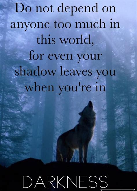 epic wolf quote   quote quotes  inspiration wolf quotes lone wolf quotes warrior