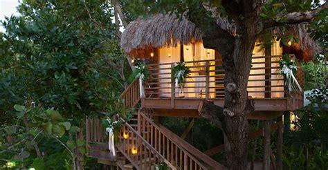 romantic tree house  wedding ideas home design