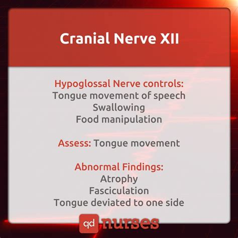 Nclex Meme - 25 best ideas about cranial nerves function on pinterest