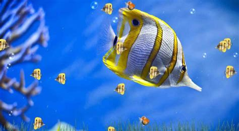 animation wallpaper for pc 3d free download download 3d wallpapers for desktop free download with