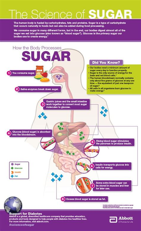 Http Dailyburn Health Sugar Detox Diet by 73 Best Sugar Detox Images On Diets Health