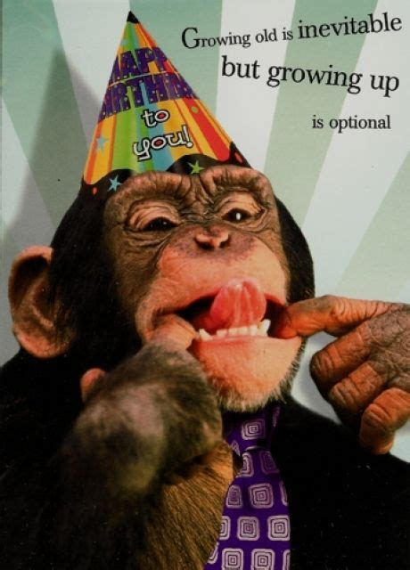 Sexy Monkey Meme - happy birthday to the monkey in my life paris let s