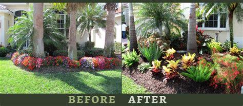Florida Garden Ideas South Florida Gardening Tips 17 Best Images About South Florida Gardens On Gardens