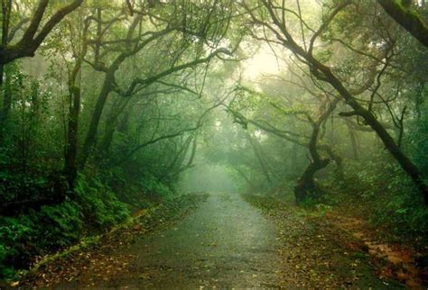15 most popular places to top 15 places to visit in mahabaleshwar