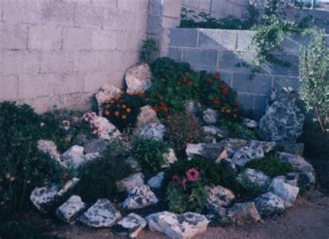 come costruire un giardino roccioso costruire un giardino roccioso come e dove realizzarlo