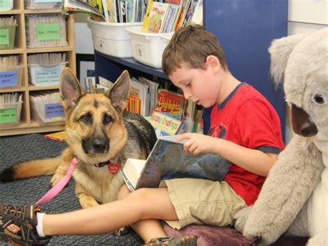 for dogs to be a therapy therapy dogs help pennsbury students learn levittown pa patch