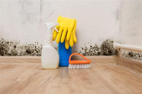 cleaning bathroom mold eliminating mold mildew in tile grout zerorez las
