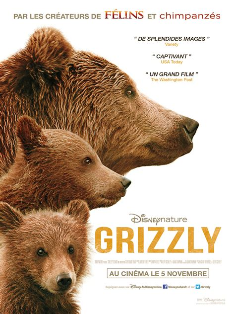 film disney ours grizzly film 2014 allocin 233