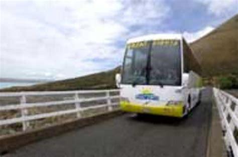 Calendar 61 Cook County Christchurch To Mount Cook One Way Tour Viator