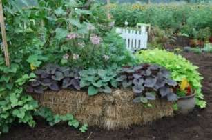 Planters Hay by Straw Bale Diy Bob Vila