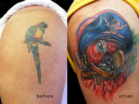 pirate parrot tattoo designs beautiful color coverup pirate parrot