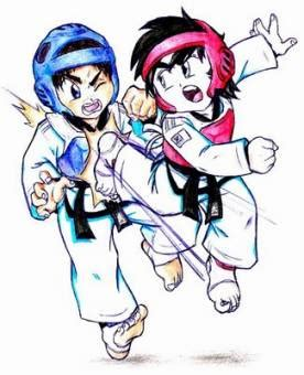 Tshirt Taekwondo Kick Logo Baam taekwondo vs karate tu votaci 243 n