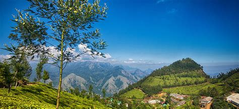 time  visit munnar weather  munnar temperature