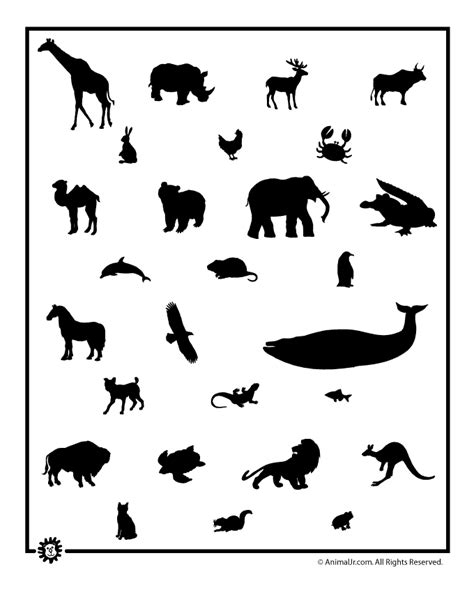 printable animal shapes free animal templates