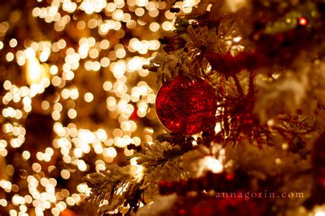 merry christmas events anna gorin photography